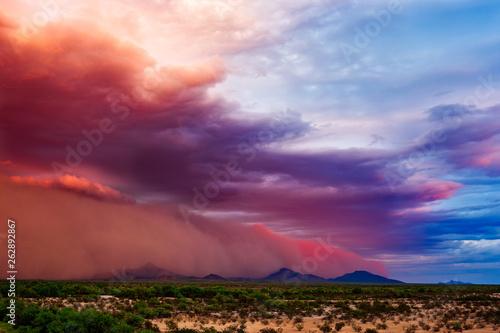 Fotografie, Obraz  Dust storm in the desert