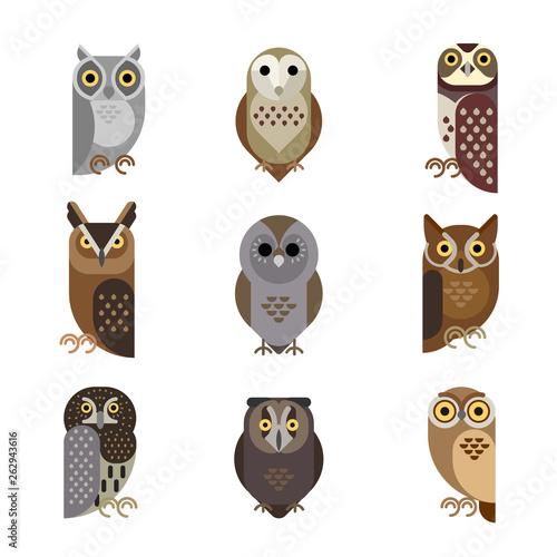 Valokuva Vector owl characters set showing different species.
