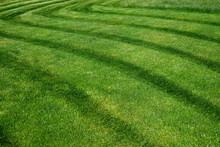 Striped Pattern On A Freshly Cut Grass Field