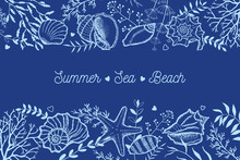Seashells, Seaweed And Twigs On A Dark Blue Background. Template For Postcards, Invitations.