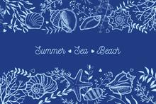 Seashells, Seaweed And Twigs O...
