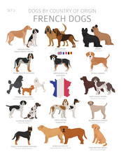Dogs By Country Of Origin. Fre...