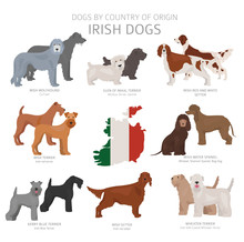 Dogs By Country Of Origin. Irish Dog Breeds. Shepherds, Hunting, Herding, Toy, Working And Service Dogs  Set