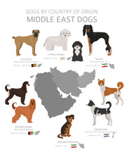 Dogs By Country Of Origin. Middle East Dog Breeds. Shepherds, Hunting, Herding, Toy, Working And Service Dogs  Set