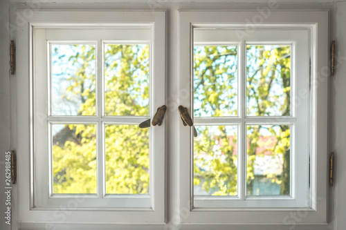 wooden window with sunny garden view - looking through old double windows -