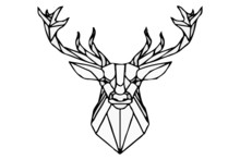 Deer With Antlers Isolated On ...
