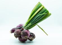 Isolated Onion Of Tropea Italy