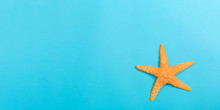 A Starfish On A Blue Paper Background