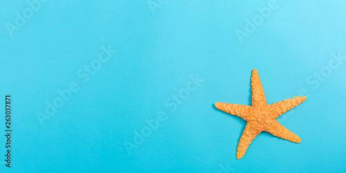 Obraz na plátně A starfish on a blue paper background