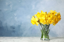 Bouquet Of Daffodils In Vase On Table Against Color Background, Space For Text. Fresh Spring Flowers