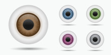 Different Eyeballs Eye Iris Vector Illustrations