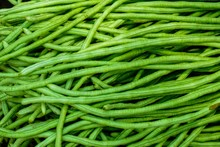 Close Up Organic Long Bean Texture Background