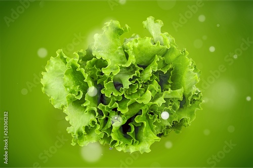 Fotografia  Fresh green salad on White Background