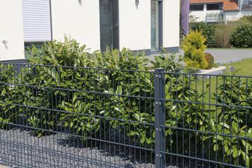 Grüner Gitterzaun (Doppelstabmattenzaun) als Grundstücksbegrenzung