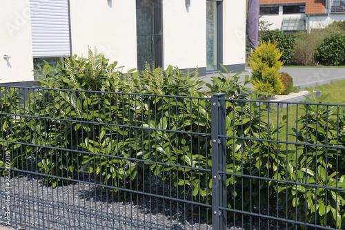 Obraz Grüner Gitterzaun (Doppelstabmattenzaun) als Grundstücksbegrenzung - fototapety do salonu