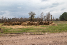 Bales Of Straw On The Ground