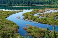 Reservoir Wetlands