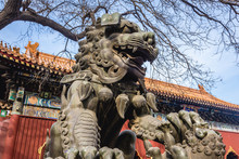 Chinese Guardian Lion Commonly...