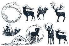 Set Of Vector Artistic Deer Si...