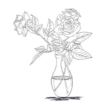 Hand-drawn Sketch Of A Bouquet Of Roses In Glass Vases. Flowers Pattern Ideas For Painting. Vector Illustration.