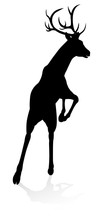 High Quality Animal Silhouette Of A Deer