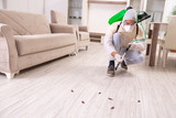 Pest control contractor working in the flat  - 263233620