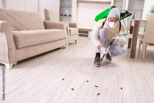 Fototapety, obrazy: Pest control contractor working in the flat