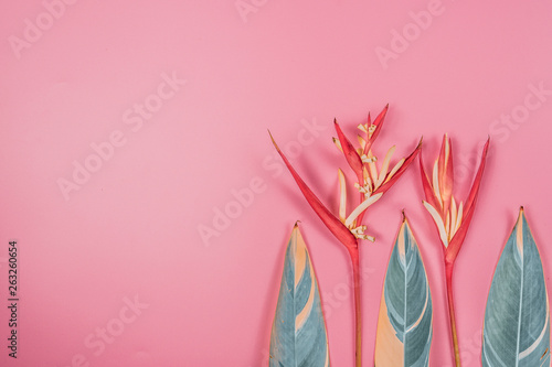 Keuken foto achterwand Bloemen tropical flowers and summer concept from colorful flat lay and web banner design from heliconia with beauty leaf on pink vintage background