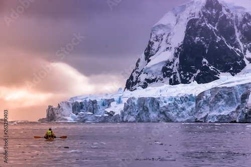 Photo Stands Lavender Kayaking in Antarctica