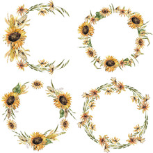Floral Wreath In A Rustic Style. Watercolor Sunflowers, Corn, Herbs. Round Frame, Template