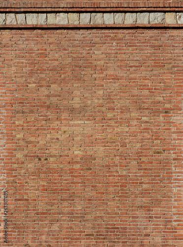 vintage brick wall Canvas Print