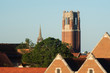 Leinwanddruck Bild - A distant view of The University of Florida in the morning