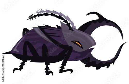 Fototapeta giant goliath bug beetle