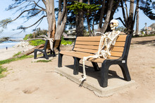 Skeleton Sits On A Bench At Th...