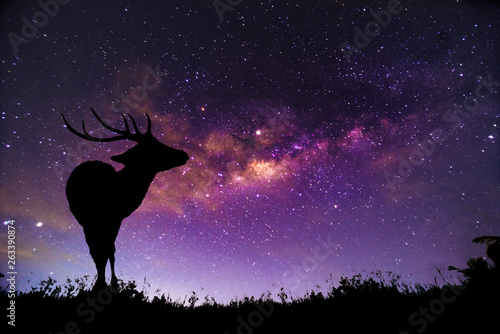 Foto auf AluDibond Violett The deer image stands in the Milky Way constellation.