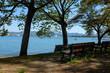 水辺の公園のベンチ