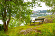 Bench without people in a picturesque place in nature. Bench overlooking the pond in a quiet place among the trees.