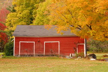 New England Barn In Autumn