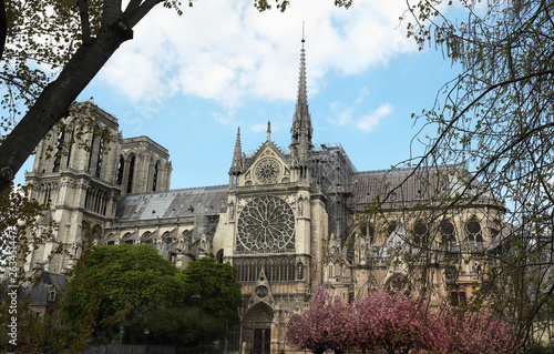 Photo  The Notre Dame Cathedral at sunny day , Paris, France.