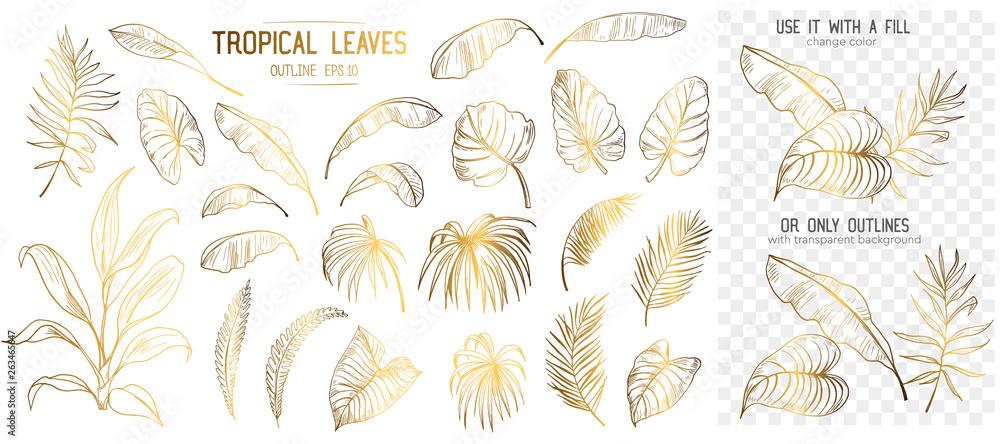 Fototapeta Set of tropical leaves. Hand drawn sketches traced in vector - obraz na płótnie