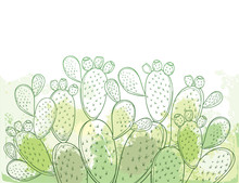 Bush Of Outline Indian Fig Opuntia Plant Or Prickly Pear Cactus, Fruits And Spiny Stem On The Pastel Green And White Background.