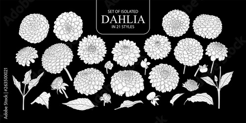 Carta da parati Set of isolated white silhouette Dahlia in 21 styles.