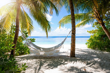 Empty Hammock On A Tropical Beach Landscape With Palm Trees And Turquoise Sea