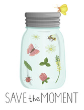 Vector Illustration Of Glass Jar With Insects And Flowers Inside. Cute Summer Illustration. Save The Moment. Moth, Butterfly, Bee, Bumblebee, Ladybug, Camomile, Clover Picture