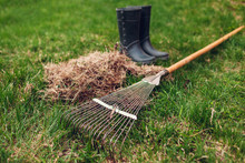 Cleaning Lawn From Dry Grass With A Rake In Spring Garden. Heap Of Grass With Boots And Tool