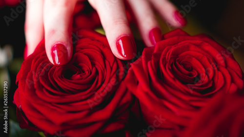 Fotografia Woman hands with manicure red nails closeup and rose