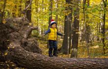 A Little Boy In A Cap Walks On A Log
