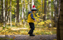 A Little Boy In A Cap Walks On...