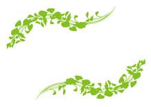 美しい緑のフレーム