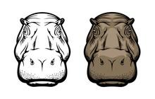 Hippopotamus, Hippo Wild African Animal Face Icon